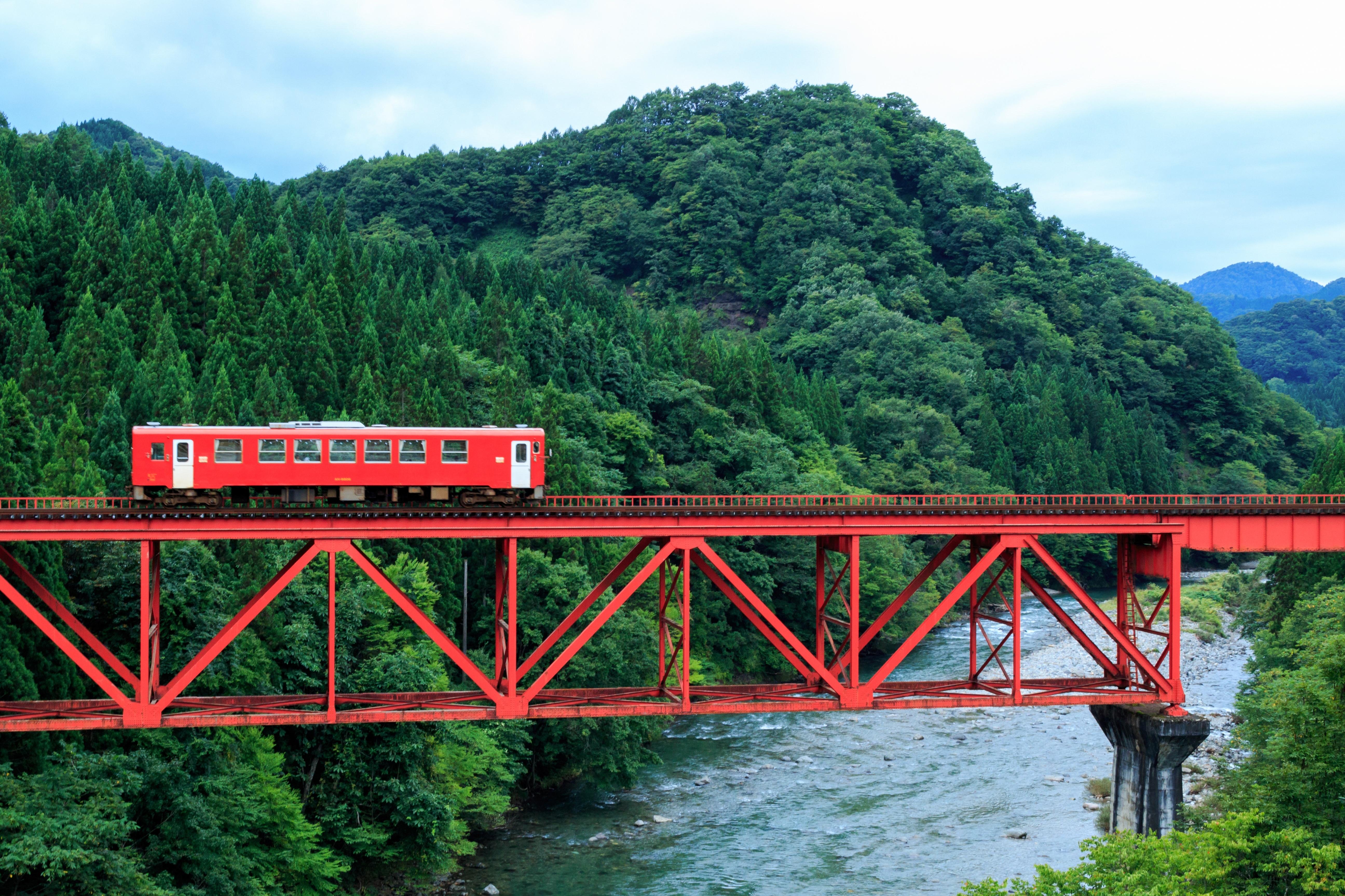 --www.pakutaso.com-shared-img-thumb-AME_akitanairiku.jpg